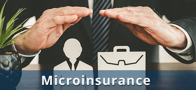 SMEs and Microinsurance: Benefits and Risks